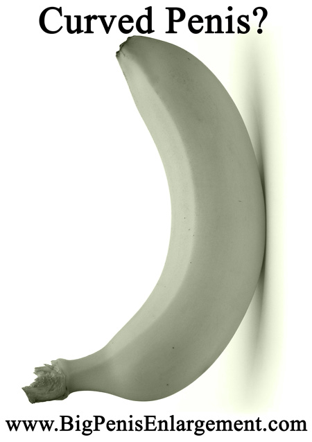 Curved Penis